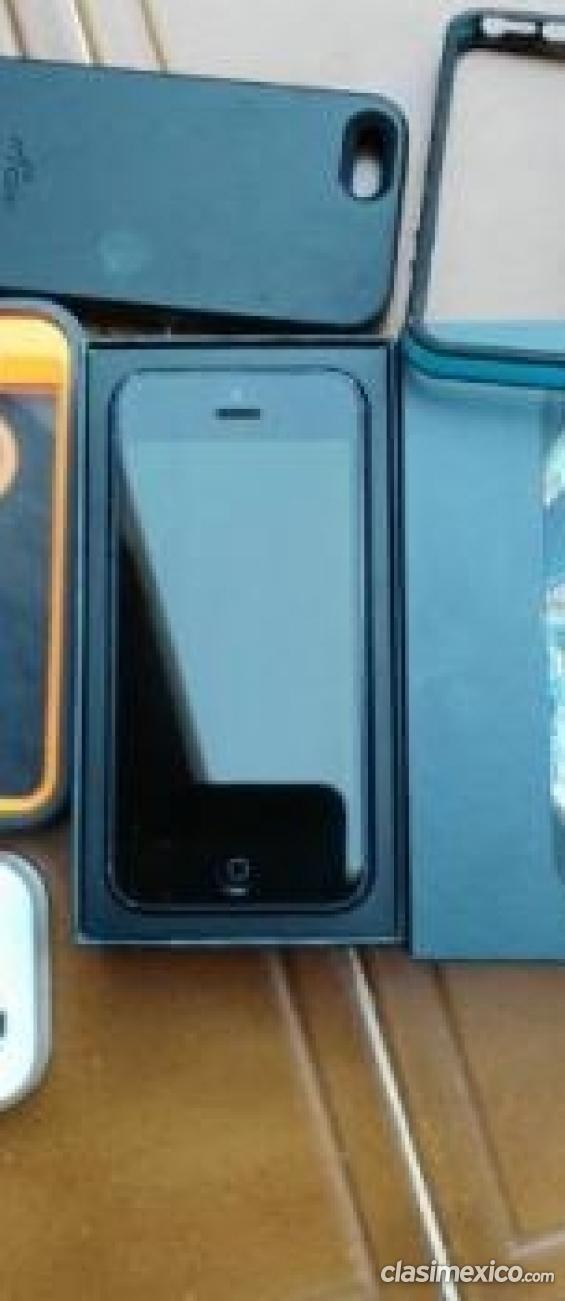 Estoy buscando vender iphone 5 liberado dejá tu comentario.