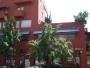 Local comercial en renta, Calle Guillermo González Camarena, Col. Unidad Santa Fé Infonavit, Alvaro Obregón, Distrito Federal