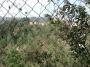 Terreno en compra, Calle LOMA DE TARANGO, Col. Lomas de Tarango, Alvaro Obregón, Distrito Federal