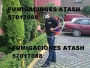 FUMIGACION EN EL DF CON 4 APLICACIONES EL MISMO DIA GARANTIA X ESCRITO EXTERMINIO
