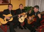 Trio romantico,  trios economicos fiesta  show!!