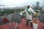 Limpieza Desinfeccion Potabilizacion de agua con plata Fumigacion Plagas