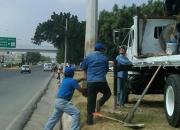 Renta de camión  con grúa  hidráulica hiab