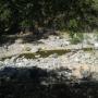 Rancho Ganadero de 540 Hectáreas en la Sidra, Colima.