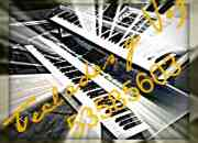 Tecladista Musico Cantante Versatil Profesional