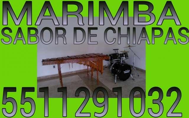 Servicio de marimba de calidad 551291032