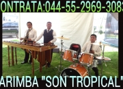 Llama55-2969-3083 Marimba aqui