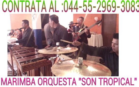 Marimba en tultitlan 55-2969-3083