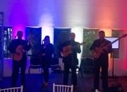 Amenizamos su valioso evento, trios profesionales para serenatas y fiestas, en df y edo me