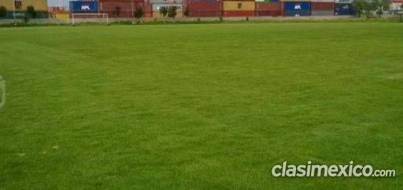 Campo de soccer 100% empastado y parejo escucho oferta.