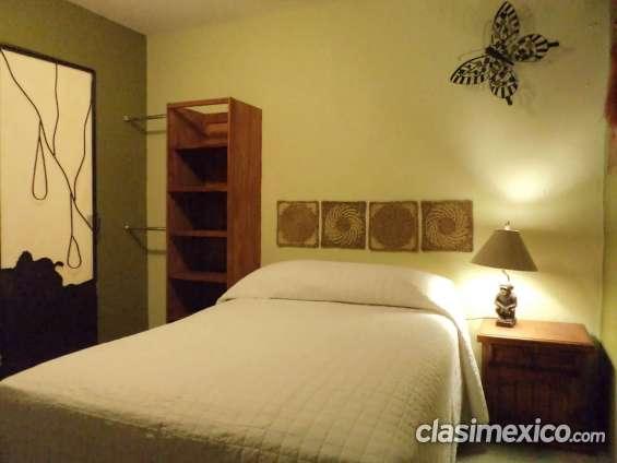Suite en renta con servicios y amueblada excelente ubicación