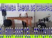 Sabor de chiapas  marimba a todo coacalco 5511291032