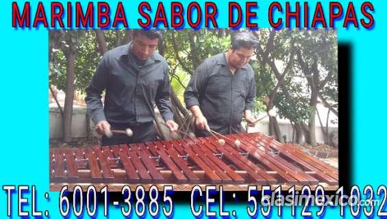 Servicios tultitlan con marimba 5511291032
