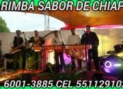 MARIMBAS VERSATILES PARA EVENTOS 5511291032
