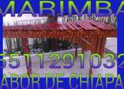 Marimba coacalco 5511291032