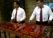 Son Tropical marimba para eventos 53054999