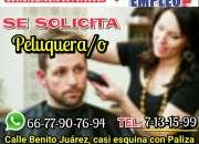 Se necesita peluquero(a)