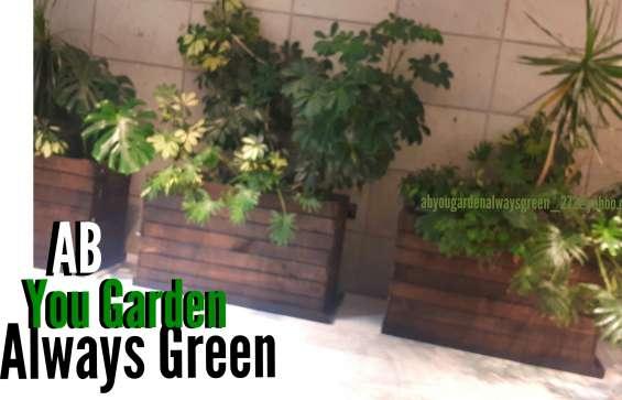 Fotos de Venta de articulos para decoracion de su jardin 2