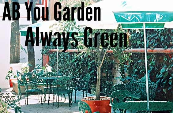 Fotos de Venta de articulos para decoracion de su jardin 3