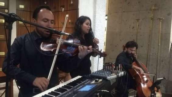 Clases de violín canto piano valle jardín real zapopan jalisco se imparten clases de pian
