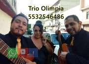 Trio y grupo musical en el df