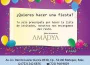 Salón de Fiestas en Metepec.